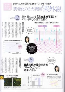 biteki_4.jpg
