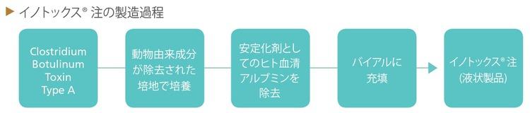 INNOTOXflow.jpg